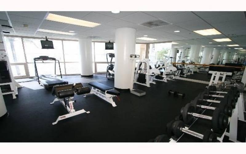 Isola Gym